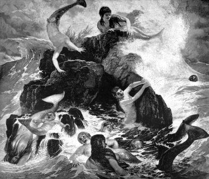 Mermaidens image